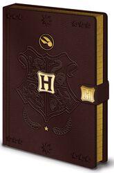 Prémiový zápisník Quidditch