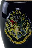 Gryffindor Unfiorm