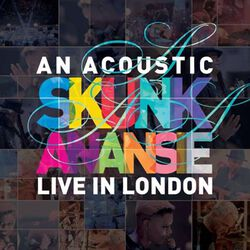An acoustic Skunk Anansie - Live in London