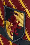 SK8-hHi Harry Potter Gryfndr/MLT