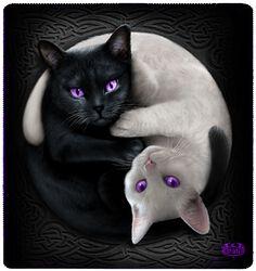 Flisová deka Yin Yang Cats