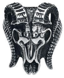Barania lebka