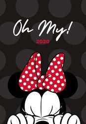 Minnie Mouse  A5 diár 2020