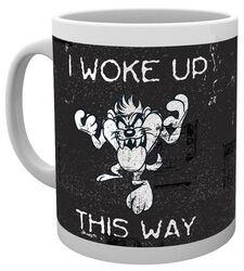 Taz Woke Up
