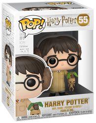 Vinylová figúrka č. 55 Harry Potter (Herbology)