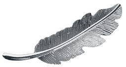 Sponka do vlasov Feather