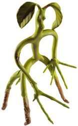 Bendy Bowtruckle