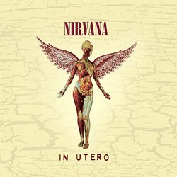 In utero (20th Anniversary Edition)
