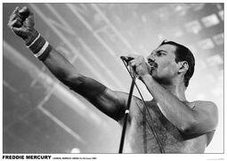 Freddie Mercury - Wembley Arena, London 1984